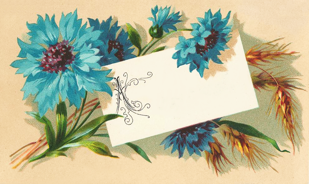 http://www.clipartplace.com/wp-content/uploads/2014/10/ClipArtPlace_Blue_Flowers_and_Wheat_Clipart.png