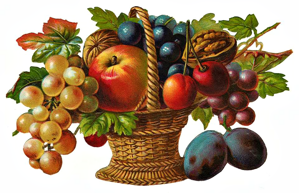 http://www.clipartplace.com/wp-content/uploads/2014/10/ClipArtPlace_Victorian_Fruit_Basket_Clipart.png