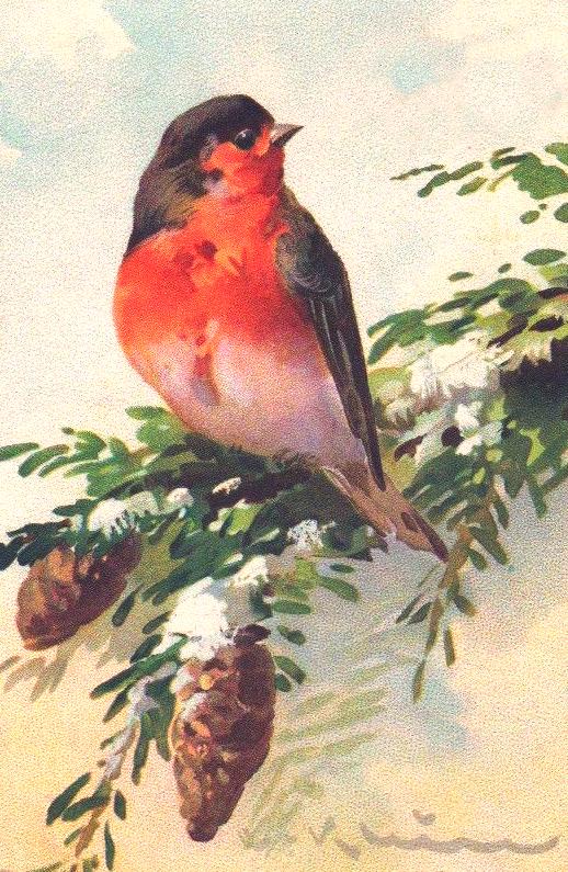 Vintage Winter Clip Art Birds – Cliparts